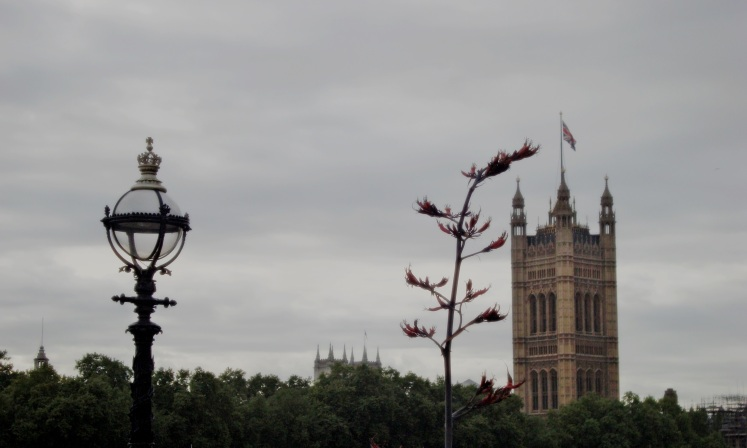 LONDONBERLINEC1